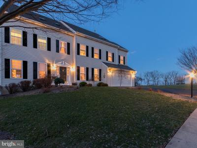 Gilbertsville Single Family Home For Sale: 255 Summer Hill Drive