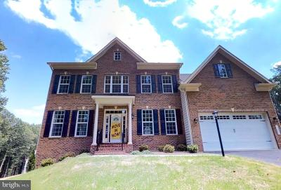 Single Family Home For Sale: 11031 Fuzzy Hollow Way