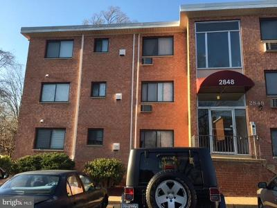 Fairfax County Condo For Sale: 2848 Annandale Road #325