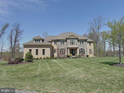 Fairfax Single Family Home For Sale: 11398 Amber Hills Court