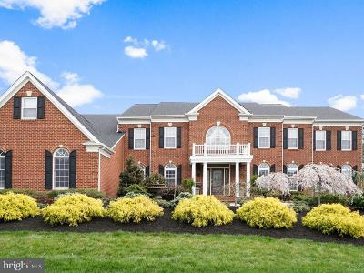 Prince William County Single Family Home For Sale: 15031 Walking Stick Way