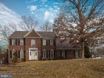 Fredericksburg Single Family Home For Sale: 4005 State Place