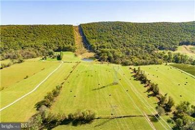 Purcellville Residential Lots & Land For Sale: 11960 Harpers Ferry Road