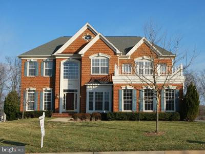Ashburn Single Family Home For Sale: 22554 Forest Run Drive