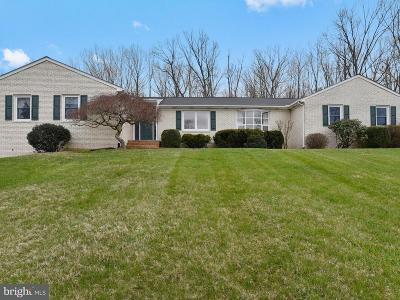 Nokesville Single Family Home For Sale: 9425 Windy Hill Drive