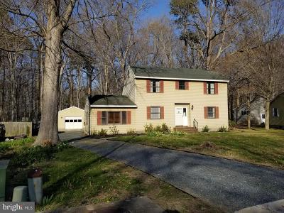 Easton Single Family Home For Sale: 29200 Holly Road