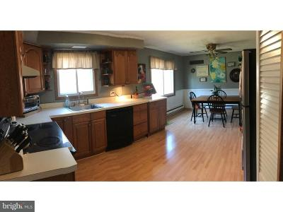 Honey Brook Single Family Home For Sale: 424 Icedale Road
