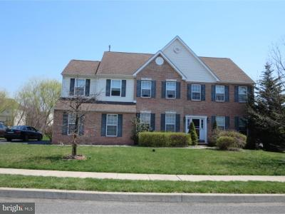 Gilbertsville Single Family Home For Sale: 535 Summer Hill Drive