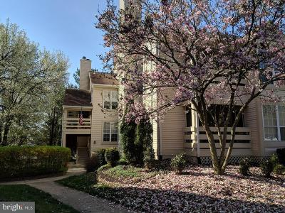 Fairfax County, Fairfax City Condo For Sale: 4555 Interlachen Court #F