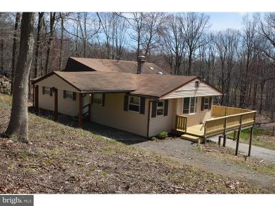 Honey Brook Single Family Home For Sale: 358 Hill Road