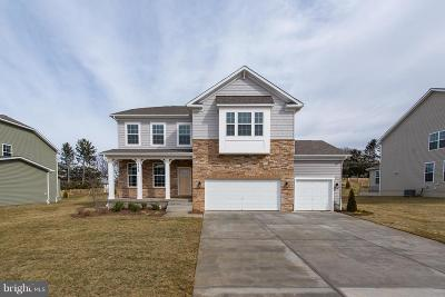 Carroll County Single Family Home For Sale: 682 Stonegate Road