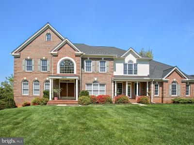 Oakton Single Family Home For Sale: 10886 Mimosa Place