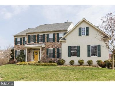 Chester Springs Single Family Home For Sale: 601 Deep Hollow Lane