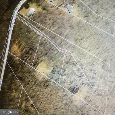 Woodsboro Residential Lots & Land For Sale: 11207 Coppermine Road
