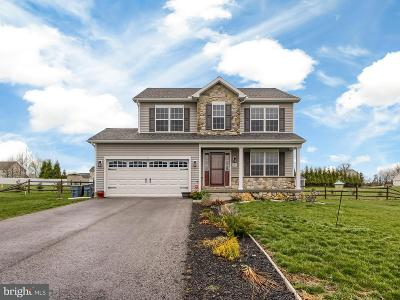 New Oxford Single Family Home For Sale: 142 Meadowview Lane