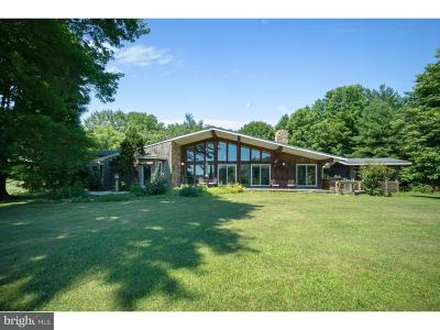 Chester County Single Family Home For Sale: 33 Carpenter Lane