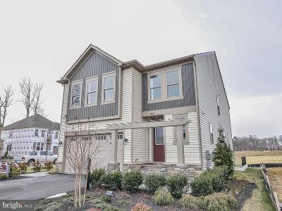 Ashburn Single Family Home For Sale: Bubbling Brook Drive