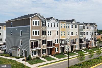 Aldie Condo For Sale: Amherst Forest Terrace