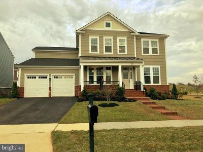 Leesburg Single Family Home For Sale: Themis Street SE