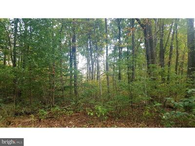 Residential Lots & Land For Sale: Lot 1 Bloody Spring Road