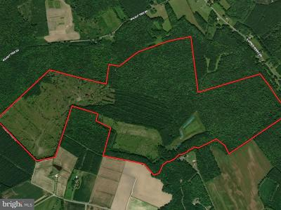 Somerset County, Wicomico County, Worcester County Residential Lots & Land For Sale: Walnut Tree Road