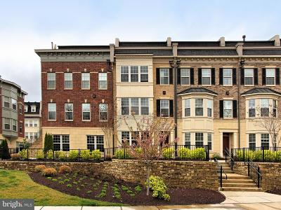 Prince Georges County Condo For Sale: 721 Sentry Square