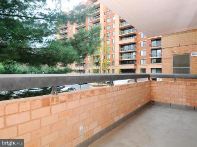 Falls Church Condo For Sale: 2230 George C Marshall Drive #224
