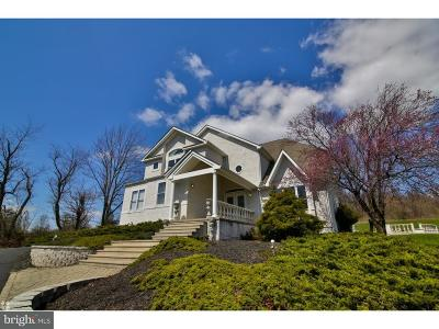 Bucks County Single Family Home For Sale: 695 Passer Road