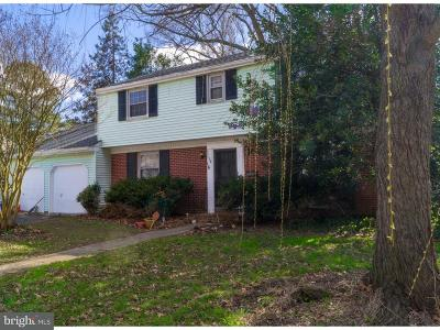 Dover Single Family Home For Sale: 538 Woodsedge Road