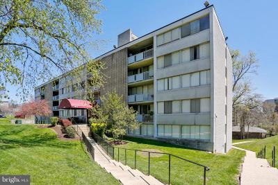 Adelphi Condo Active Under Contract: 1822 Metzerott Road #B-2