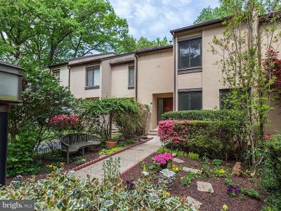 Reston Single Family Home For Sale: 2364 Soft Wind Court
