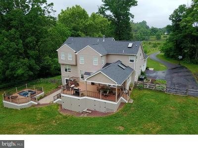 Lovettsville Single Family Home For Sale: 11931 George Farm Drive