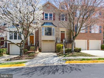Falls Church Single Family Home For Sale: 3923 Barcroft Mews Court