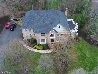 Herndon Single Family Home For Sale: 3400 Nathaniel Oaks Court