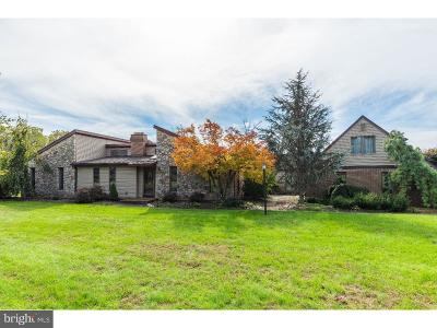 Bucks County Single Family Home For Sale: 127 King Road