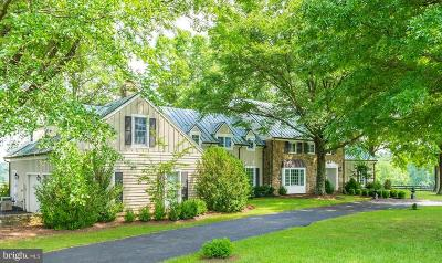 Loudoun County Single Family Home For Sale: 21167 Trappe Road