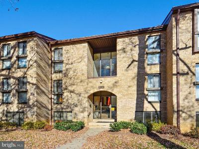 Reston Condo For Sale: 2044 Royal Fern Court #2A
