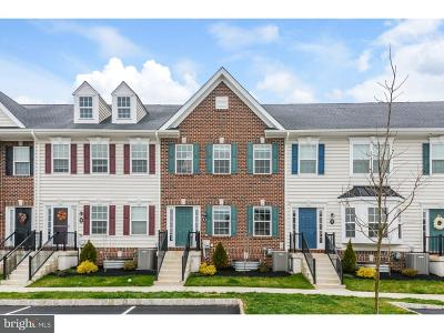 Bucks County Single Family Home For Sale: 3799 Jacob Stout Road #8