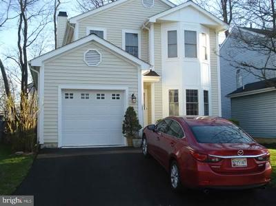 Gaithersburg Single Family Home For Sale: 20020 Mattingly Terrace