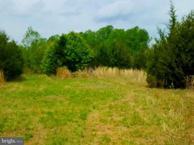 Spotsylvania Residential Lots & Land For Sale: 6726 Courthouse Road