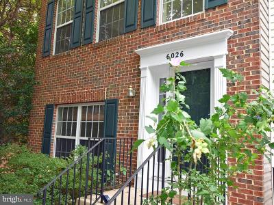 Centreville, Clifton Townhouse For Sale: 6026 Anne Marie Terrace