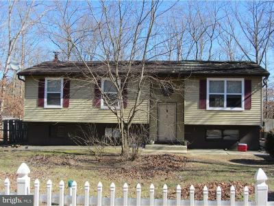 Franklinville Single Family Home For Sale: 40 Damascus Road