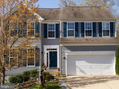 Fredericksburg Single Family Home For Sale: 49 Carriage Hill Drive