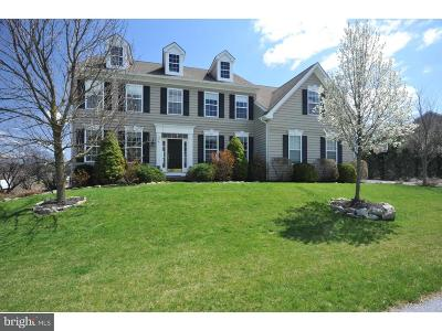 Downingtown Single Family Home For Sale: 17 Gabe Circle