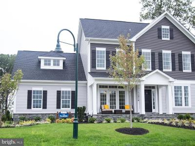 Loudoun County Single Family Home For Sale: Courtney Meadow Place