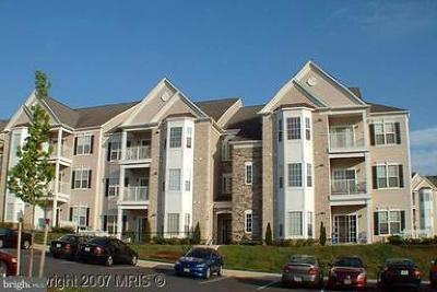 Harford County Condo For Sale: 402 Harrison Court #6