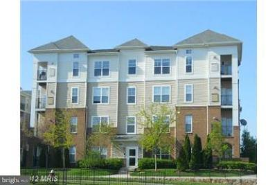 Chantilly Condo For Sale: 3840 Lightfoot Street #148