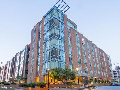 Reston Rental For Rent: 12025 New Dominion Parkway #211