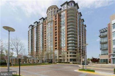 Mclean, Mc Lean Rental For Rent: 8220 Crestwood Heights Drive #612