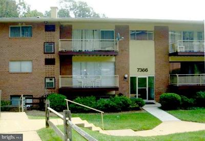 Falls Church Condo For Sale: 7366 Lee Highway #T-3